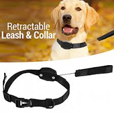 2 IN 1 RETRACTABLE LEASH AND COLLAR
